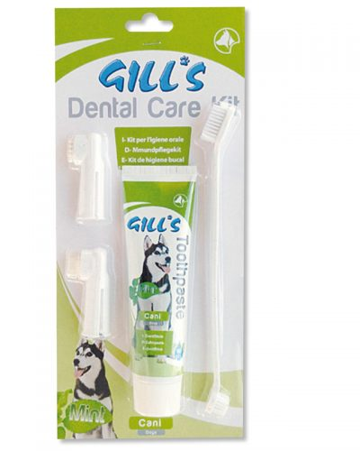 gill's dental care toothpaste pet action pet shop