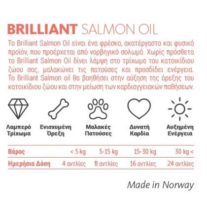 brilliant salmon oil λαδι σολωμου 300ml pet shop online νεα ιωνια