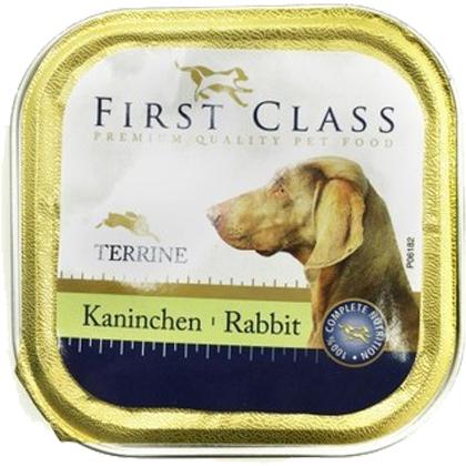 first class rabbit pet shop online νεα ιωνια