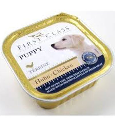 first class puppy pet shop online νεα ιωνια