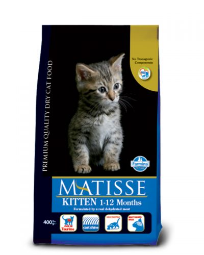 matisse kitten pet shop online νεα ιωνια