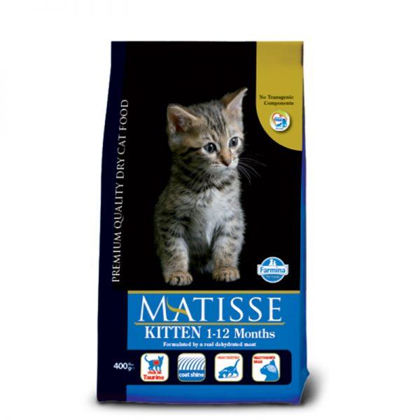 matisse kitten pet shop online νεα ιωνια