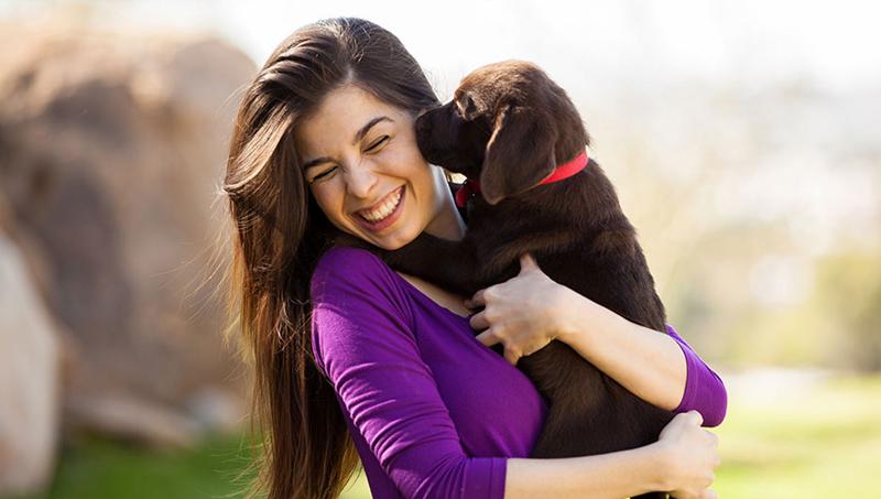 9 τρόποι που ο σκύλος δείχνει την αγάπη του